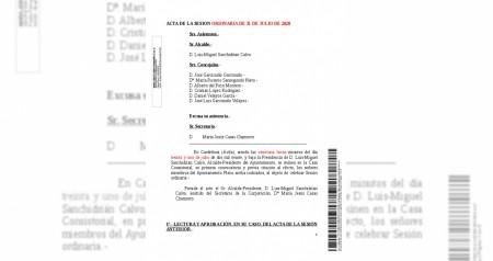 Acta 20200731