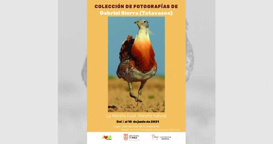 Cartel expo fotos