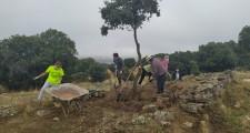 Voluntarios Trabajando 4